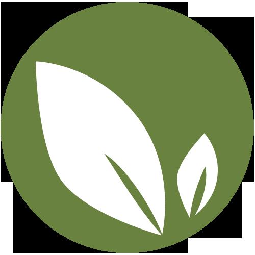 natürliche & unbehandelte Bambus Trinkhalme